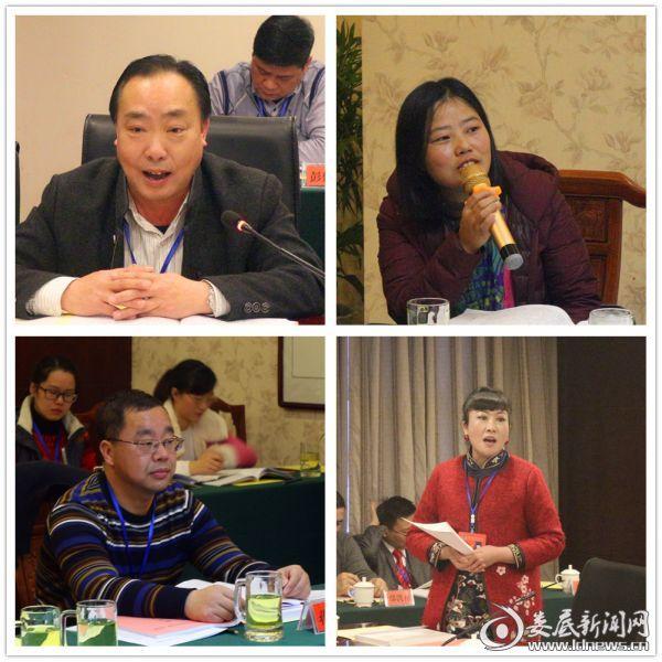 出席政协娄底市第五届委员会第一次会议的委员开展分组讨论《政府工作报告》