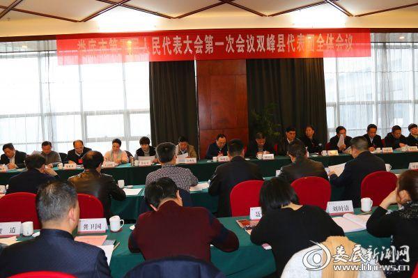 图为双峰县代表团讨论现场