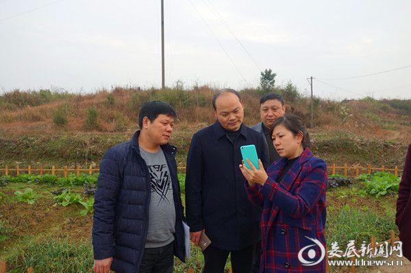 锄头娃农场负责人阳海玲向省市领导介绍农场创意