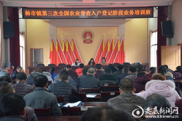 杨市镇召开第三次全国农业普查入户登记阶段业务培训