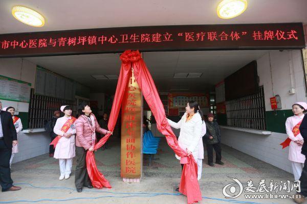 市中心医院党委书记李劲松(左)和双峰县人大副主任赵准剑(右)为医联体协作医院揭牌