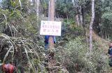 油溪乡全面巡查地质灾害滑坡点