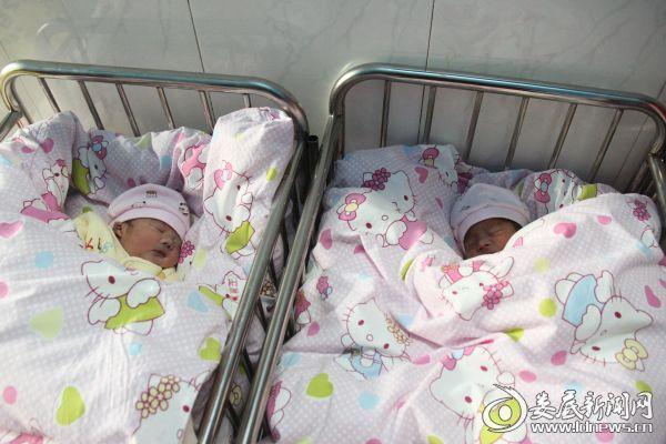 一对可爱的双胞胎男婴