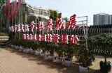 188bet市石马公园2017杜鹃节花卉展即将启幕