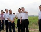 杨懿文调研孙水河生态廊道项目:搞好示范 形成零碳产业链条