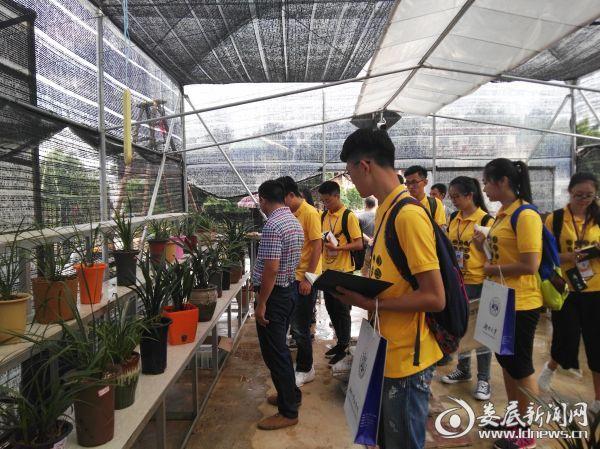 湖南大学法学院到洪山殿镇开展暑期社会实践调研
