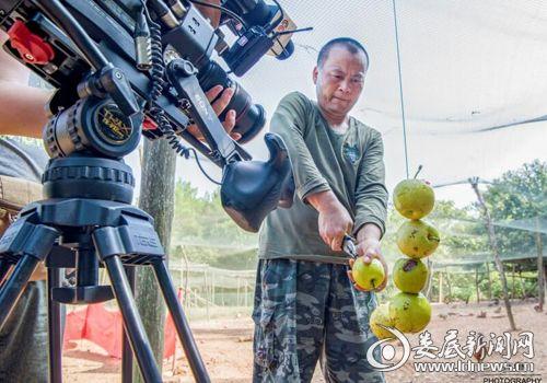 002  中央电视台第七套节目《农广天地》栏目拍摄组在拍摄野鸡司令刘亚为野鸡制作美味水果