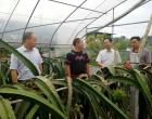 省农业委到涟源验收省级农产品质量安全县创建项目
