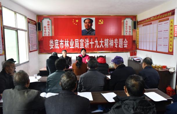 娄底市林业局领导到双峰县九峰山村宣传党的十九大精神