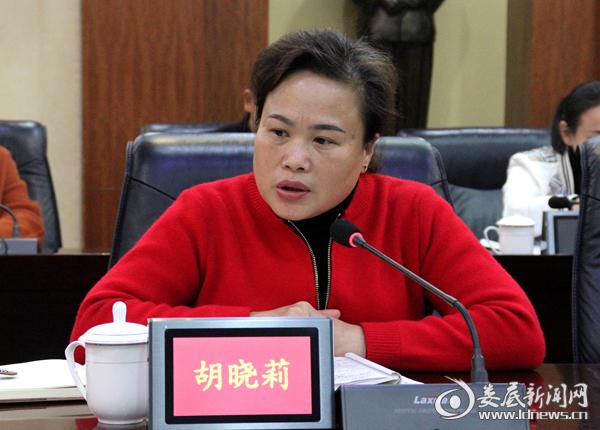 湖南省国际工程咨询公司胡晓莉处长讲话
