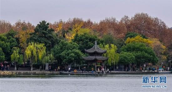 (西湖边不同种类树木呈现出多种色彩4)