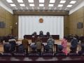 """""""湖南鑫美格新型装饰材料有限公司""""非法集资案宣判 被告人肖文求一审被判十五年"""