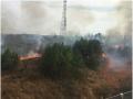 娄底城郊一山林突发山火 4S店员工和消防官兵奋勇扑灭
