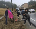 春节后第一个工作日 井字镇开展植树迎新春