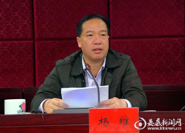 市发改委党组书记、主任杨维讲话