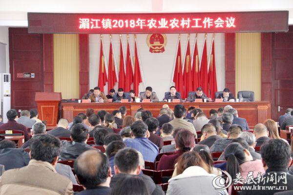 (湄江镇2018年农业农村工作会议)