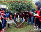 """永丰镇五里学校开展""""感恩关怀 撒播绿色""""植树活动"""
