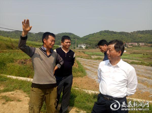 区、镇、村干部和蔬菜大户刘永福亲切交流