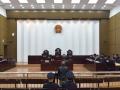 """娄底市中级人民法院公开审理""""28人跨国拐卖妇女团伙案"""""""