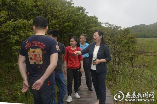 (邹华一行实地考察大围山国家森林公园森林康养步道)
