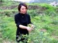 """娄底""""蓝莓姐""""绝境创业 带领176户贫困户荒山上建生态基地"""