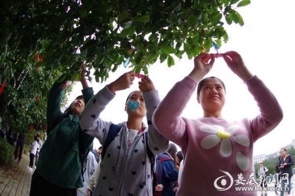 (南华大学的师生们,自发在学校的广场上,通过叠千纸鹤、写心愿卡、挂红丝带等方式,为胡卫民祈祷)