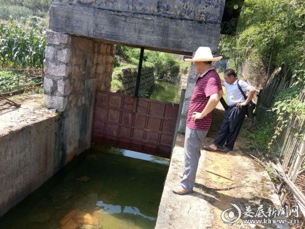 工作人员在查看闸门水位