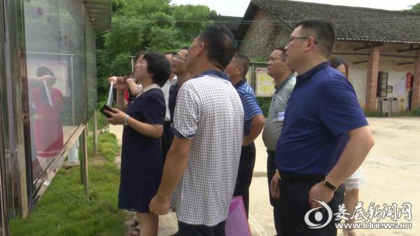 (陈慈英在新红星村村务公开栏前查看相关资料)