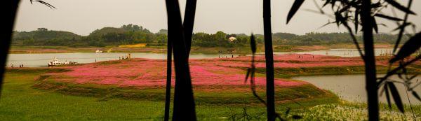苏溪湖龙湾湿地公园