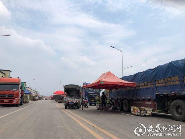 交易火爆的鑫泰农贸市场