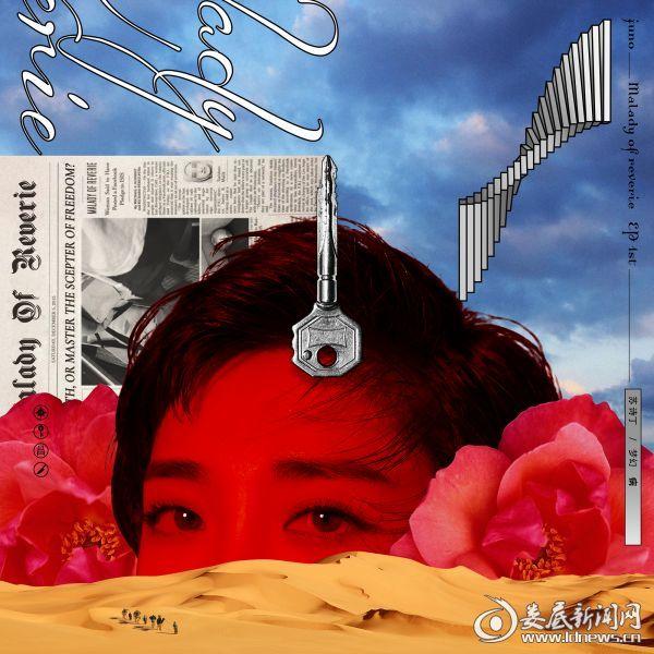苏诗丁梦幻病封面