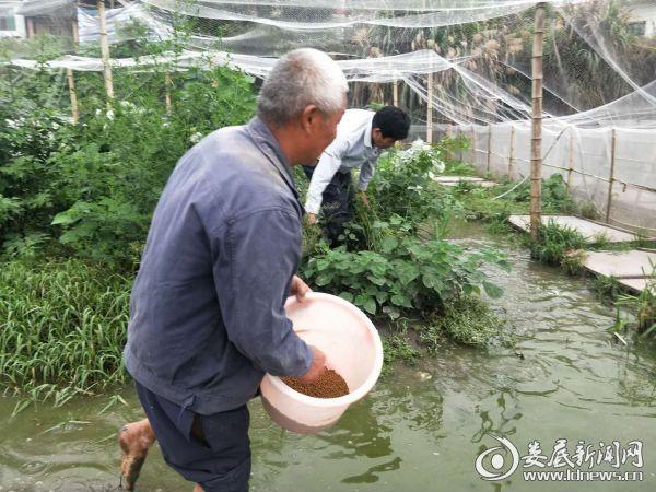 (龙明星(左)在陈倜军的养殖场学习养殖技术)