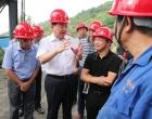 杨懿文:不折不扣完成整改工作 坚决打好打赢污染防治攻坚战