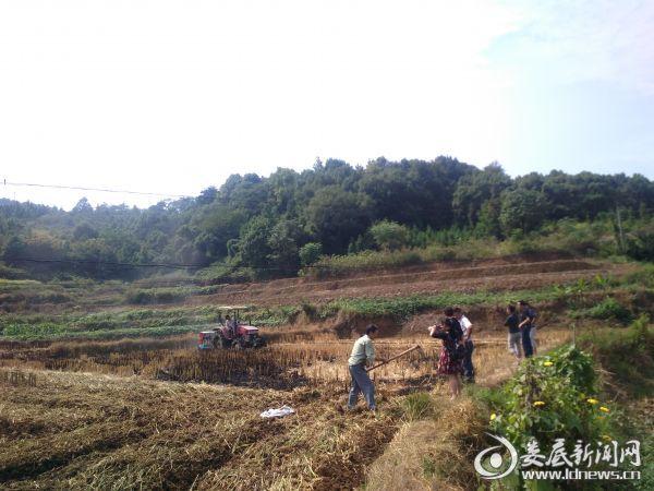 农户、帮扶工作队、村干部跟班作业齐心协力搞冬播