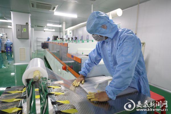 位于广电子产业孵化园内的京科电子科技有限公司主要生产制造手机触摸屏等通信通讯设备