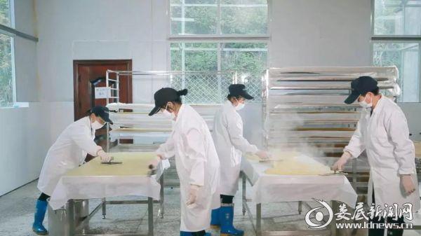 (红薯产业的发展带动了当地就业和脱贫致富)
