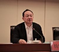 杨懿文: 强执法防变乱 为龙虎和高质量生长发明稳固情况