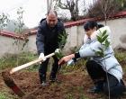 娄星区规划分局积极开展2019年新春植树活动