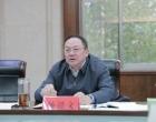 杨懿文专题研究财税工作:夯实财政增收基础 全力保障高质量发展