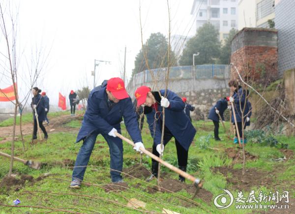 园林职工开展义务植树3