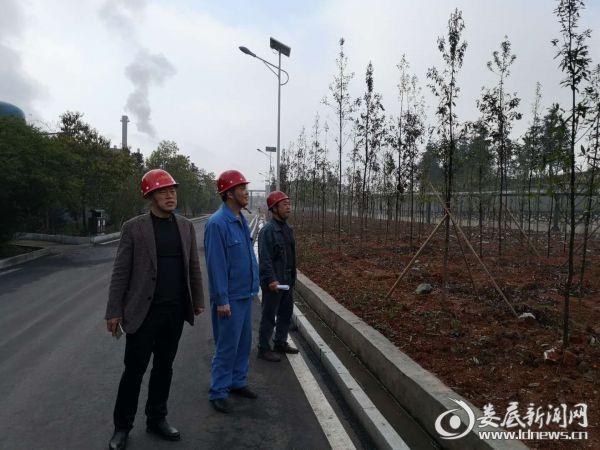 党委副书记、镇长刘林飞在汇源督导森林防火带工作