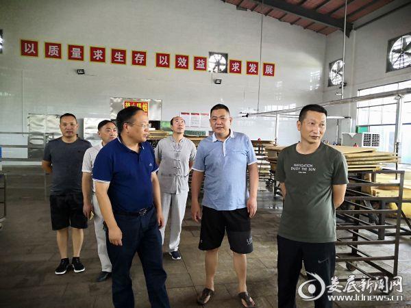 (杨韶红(前排左一检查企业安全生产))