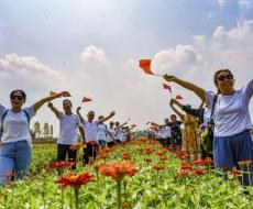5分快乐8产品 丰富文化味浓 中秋节娄底旅游综合收入达4.89亿元
