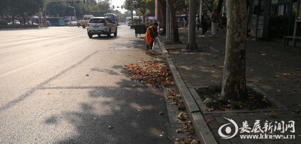 杨良轩清扫长青街区政府段主干道的落叶