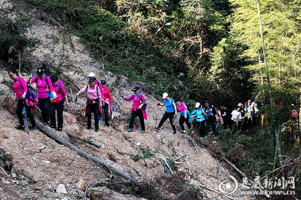 山高路陡,大家奋勇攀登累并快乐着。DSC_8771_