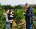 新化县开展垃圾分类及经果林栽培技术培训