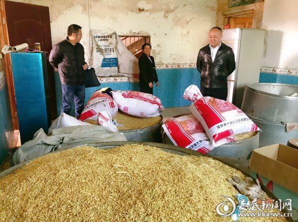 市医保局党组书记、局长 倪志铭(右一)查看帮扶对象稻谷收成情况