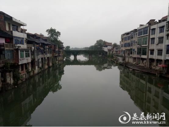 """(杨市镇""""水清、河畅、岸绿、景美""""的美丽水生态环境)"""