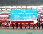 """2019年首届""""中国体育彩票""""全国城市高智尔球邀请赛在娄底举行"""