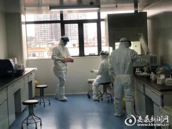 正在实验室忙碌的检验人